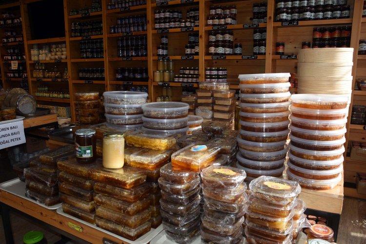Marmaris'te Bu Yılın Çam Balı Rekoltesi 80 Bin Ton Olacak
