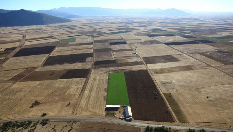 DSİ 2019'da, Muğla'da 10 Bin Hektar Arazi Toplulaştıracak