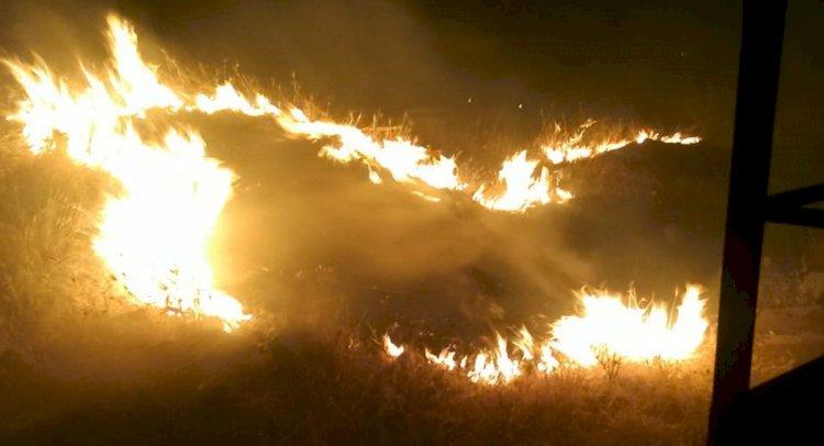 Gümüşlük'te Yine Yangın Vardı!