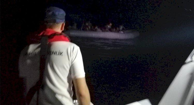 Denizde Kovalamaca!..