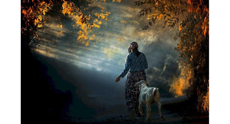 Muğla'da Yaşam'ı Anlatan En İyi Kare