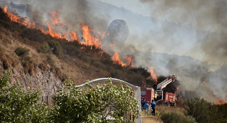 50 Hektar Makilik Alan Yandı!