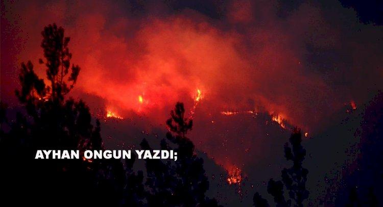 Kozan Dağı Çatal Matal