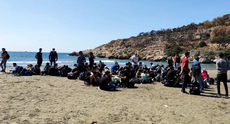 96 Düzensiz Göçmen Yakalandı