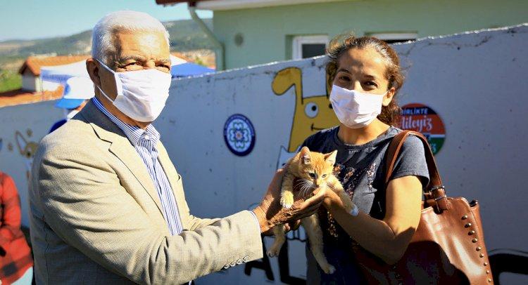 Muğla'da 2 Bin 97 Hayvan Sahiplenildi