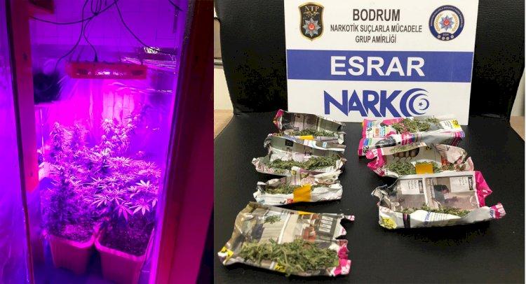 Bodrum'da Uyuşturucu Evine Baskın!..