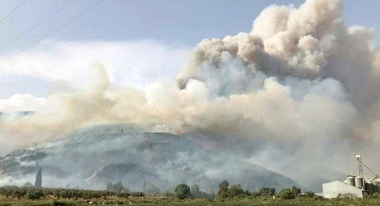 2020'de 328 Orman Yangını!..