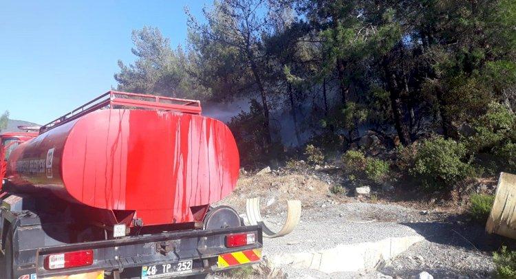 Güvercinlik'te Orman Yangını