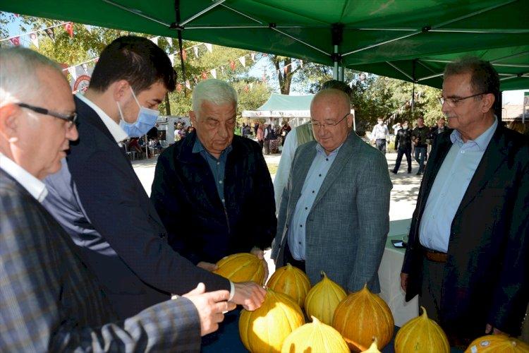 Muğla'da Yayla Kavunu Yarışması